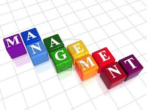 management-pic